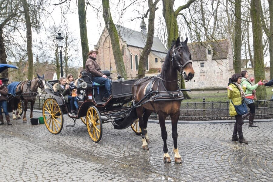 Bruges horse carriage ride