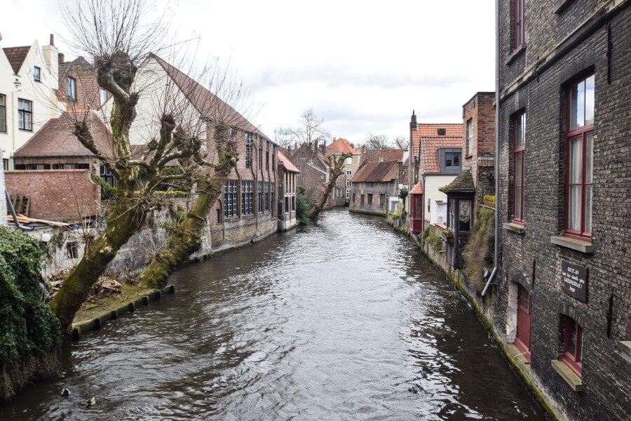 Venice look