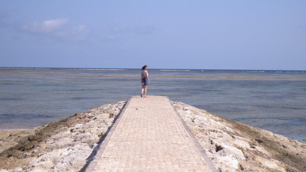 vijay-mango-traveler
