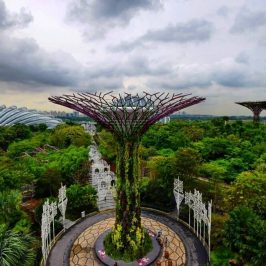 Singapore Best Garden - Gardens by the bay