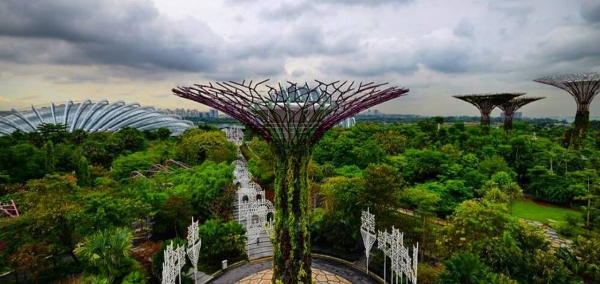 Singapore's Best Garden to visit – Gardens By The Bay