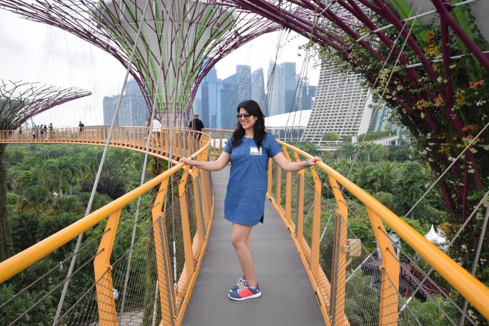 ocdc skyway supertree grove