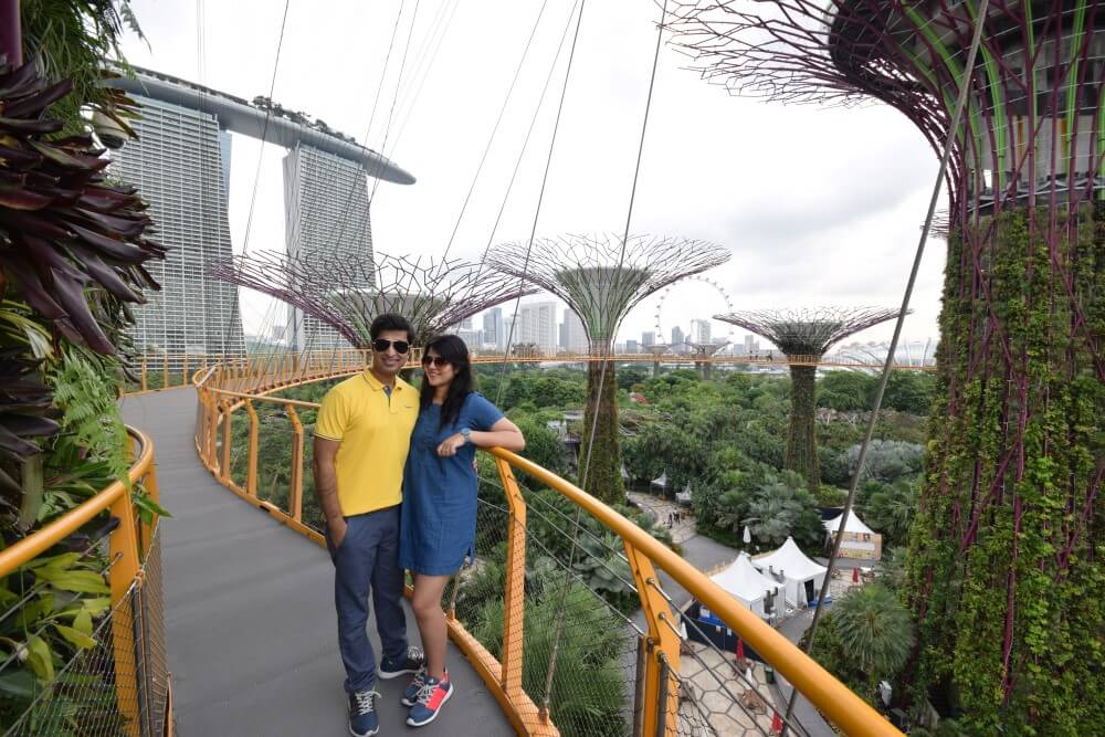 super tree groves Gardens by the bay